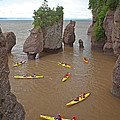 Kayaks At Hopewell Rocks by Ted Kinsman