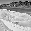 Kelso Sand Dunes 2 Bw by Kelley King