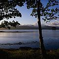Kenmare Bay, Ring Of Kerry In Bg, Co by The Irish Image Collection