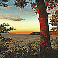Kentucky Lake Sunrise by William Fields