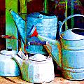 Kettles And Cans To Water The Garden by Elaine Plesser