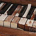 Keys by Diane Greco-Lesser