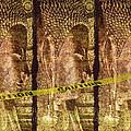 Kill The Buddha by Skip Nall