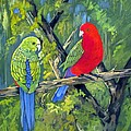 king parrots Australia by Audrey Russill