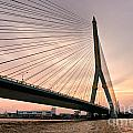 King Rama Bridge Bangkok by Luciano Mortula