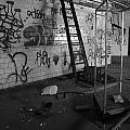 Kings Ladder by Maglioli Studios