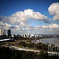Kings Park View by Therese Alcorn