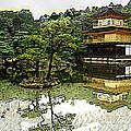 Kinkaku-ji Kyoto by Sally Fowler