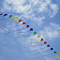 Kites Fly In A Rainbow Of Colors by Stephen Alvarez
