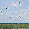 Kites Over The Bay by David Lee Thompson
