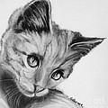 Kitten Cameo by Susan A Becker
