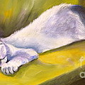Kitten Dream by Susan A Becker