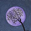 Kittyboy Moon by Marilyn Ferguson