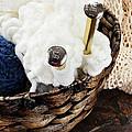 Knitting Needles by Stephanie Frey