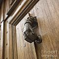 Knocker by Bernard Jaubert