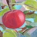 Kogyoku Apple by Kazumi Whitemoon