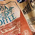 Kona Coffee by Caroline Lomeli