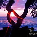 Kona Sunset Hawaii by Jerome Stumphauzer
