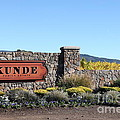 Kunde Family Estate Winery - Sonoma California - 5d19316 by Wingsdomain Art and Photography