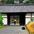Kyoto Rain by Thomas Michael Corcoran