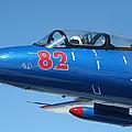 L-29 Delfin Standard Jet Trainer by Daniel Karlsson