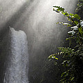 La Paz Waterfall Costa Rica by Bob Christopher