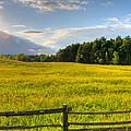 La Prairie by David Leblanc