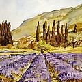 La Provence by Stephanie  Koehl