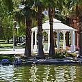 La Quinta Park Summer by Linda Dunn