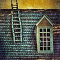 Ladder On Roof by Jill Battaglia