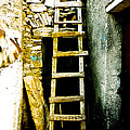 Ladder To by Stacey Granger
