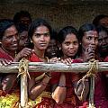 Ladies In Waiting by Valerie Rosen