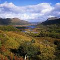 Ladies View, Killarney, Co Kerry by The Irish Image Collection