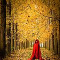 Lady In Red - 5 by Okan YILMAZ
