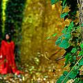 Lady In Red - 8 by Okan YILMAZ