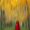 Lady In Red - 9 by Okan YILMAZ