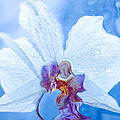 Lady Orchid The Sky Beckons by Marie Jamieson