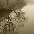 Lake Agawam by Steve Gravano