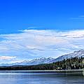 Lake Alva by Janie Johnson