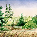 Lake County Landscape by MB Matthews