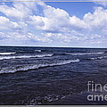 Lake Erie At Evangola State Park 2 by Rose Santuci-Sofranko