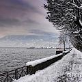 Lake Front In Winter by Mats Silvan