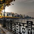 Lake Front With Autumn Trees by Mats Silvan