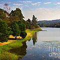Lake Landscape by Carlos Caetano