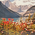 Lake Louise Alberta by Ian  MacDonald