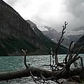 Lake Louise by Laurel Best