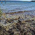 Lake Michigan 1 by Janice Adomeit