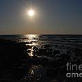 Lake Michigan Sunset by Grace Grogan