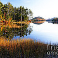 Lake Reflections In Acadia by George Oze