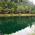 Lake Reflections by Linda Hutchins